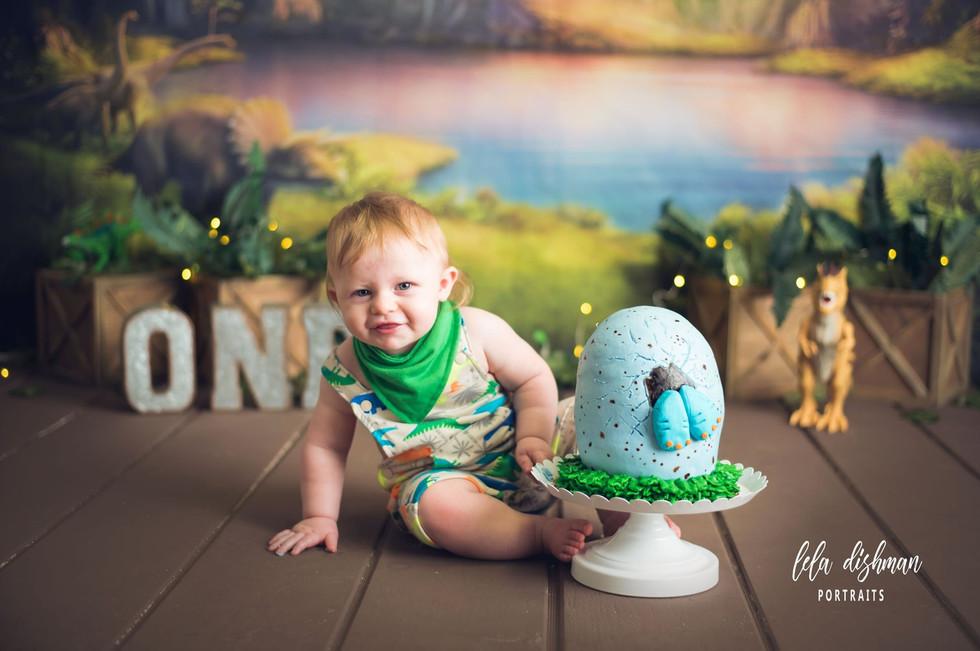 William is turning one! Custom Dino Cake Smash - Monticello, Somerset KY Photographer~ Lela Dishman