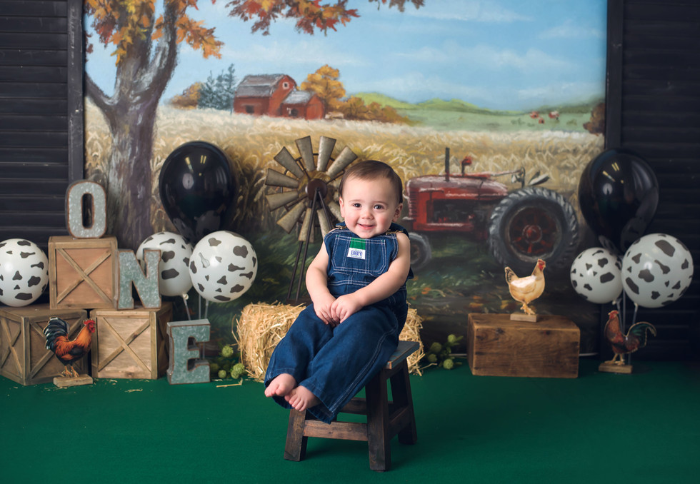 Logan's One! Farm scene cake smash ~ Monticello, Somerset KY Photography