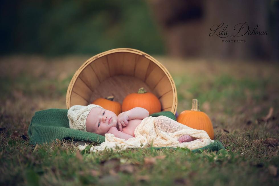 Jaxson Myles {Monticello, Somerset, Albany KY Newborn Photographer}