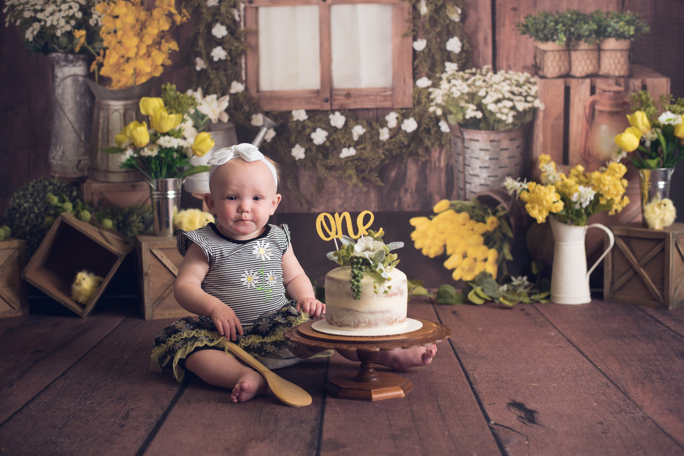 First Birthday Cake Smash ~ Monticello, Somerset KY Photography