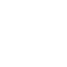 UDAsoccer_white_R.png