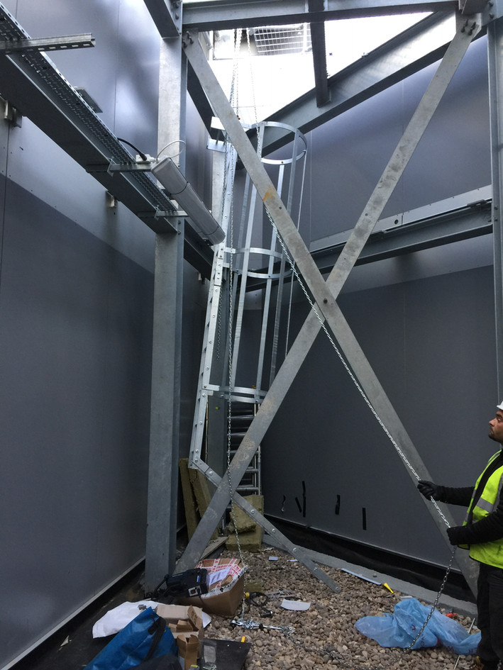 Cat Ladder installed by Atlantas
