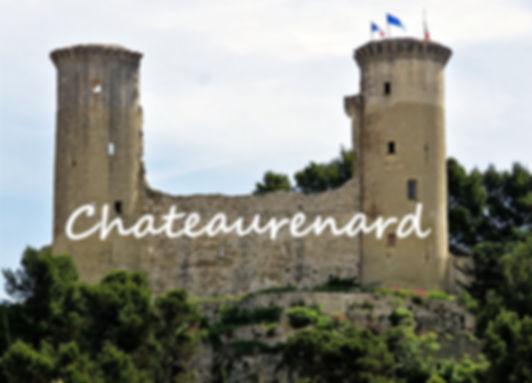 chateau_100.jpg