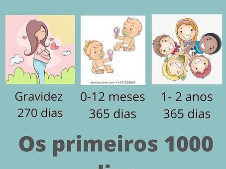 OS PRIMEIROS 1000 DIAS DO BEBÊ