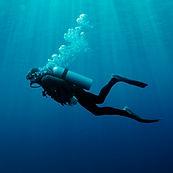 Bajo el agua Buceo