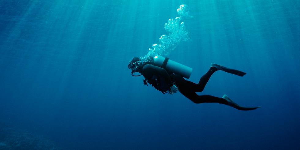 Q&A Learn to Scuba Dive