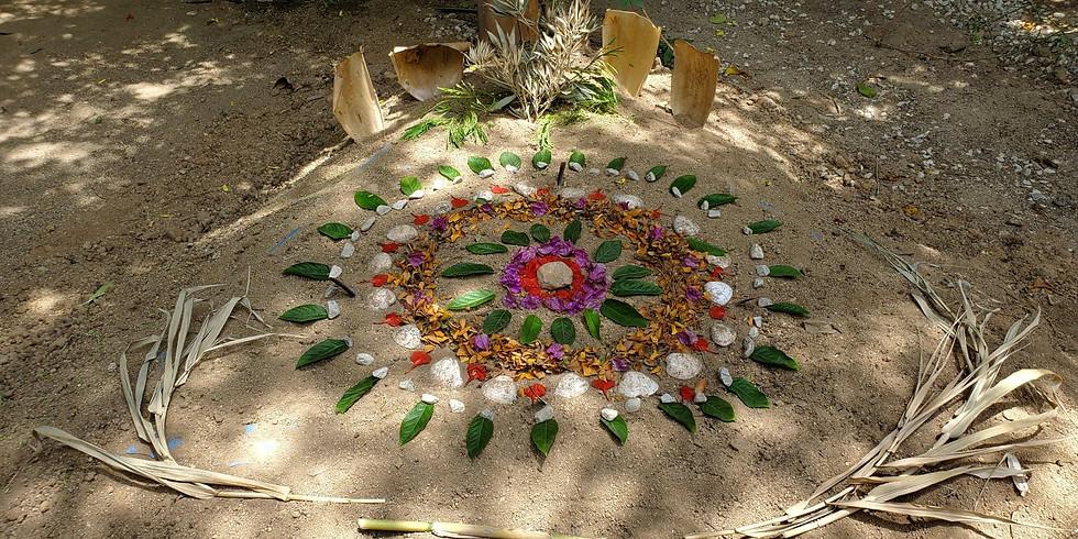 4 Day Retreat - SomaHeart Ceremony & Numa Somatics Breathwork
