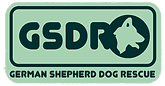 GSDR_logo-transparent.png