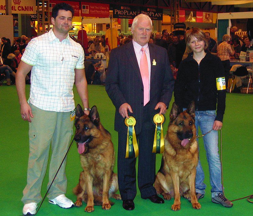 CRUFTS ICE & ZAMP3