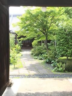 第5回 子どもと大人の      「堺・歴史ウォーク」(2019.5.26)