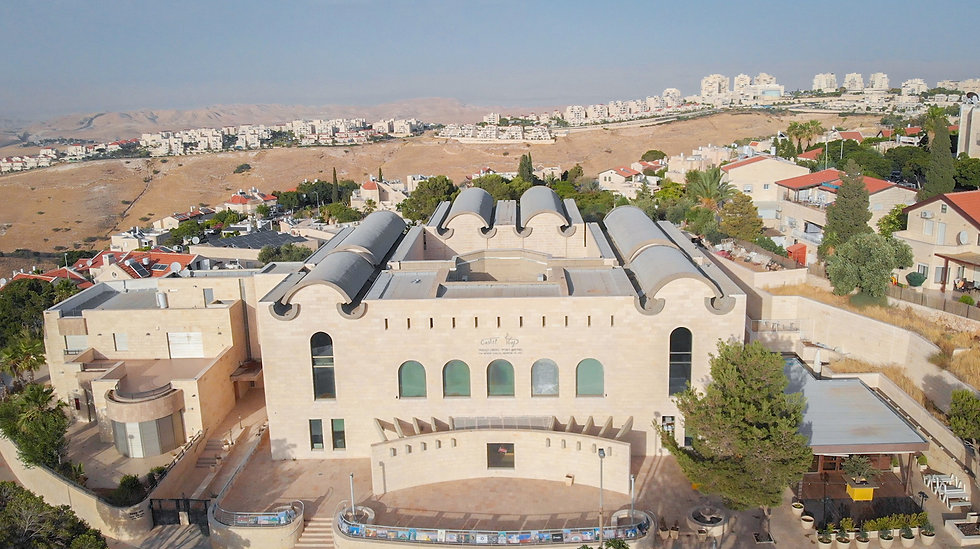 Moshe Castel Drone.jpg