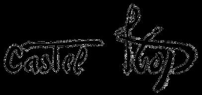 castel logo.png