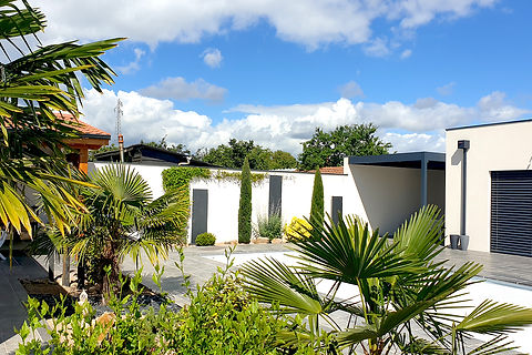 Palmier autour d'une piscine