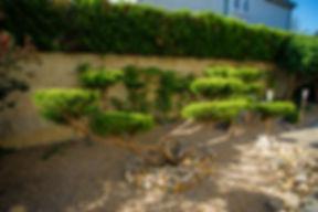 jardiservice-1960.jpg