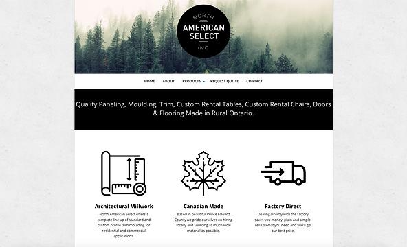 American Select Website Design