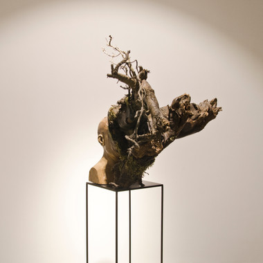 Untitled (Uprooted Self-portrait)