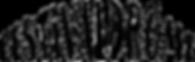 logo-festivaldrome-noir.png