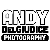 ADP-Logo13-TP-1080x1080.png
