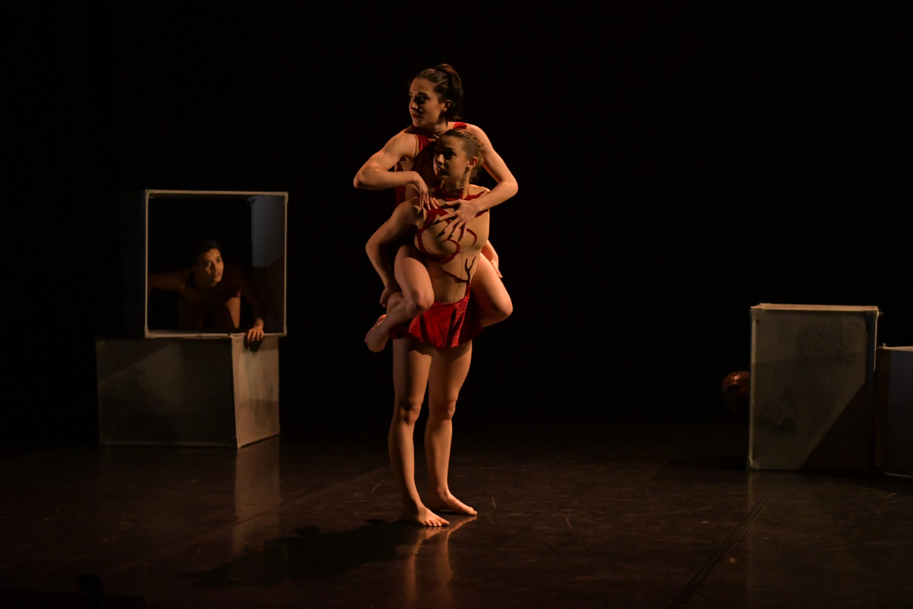 Calyx - Phoenix Dance Theatre
