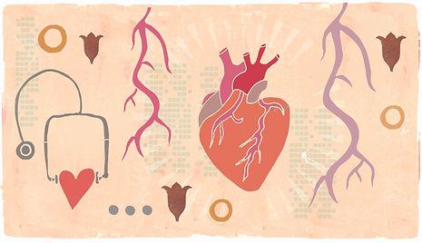 Inska-opas verisuoniterveys.jpg