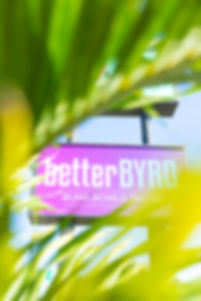 BB sign through the trees.jpg
