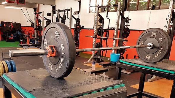 bar bumper plates squat rack