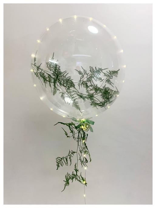 Fern Bubble
