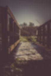 focus-photography-of-bridge-facing-tall-