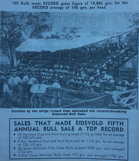 historical sale.jpg