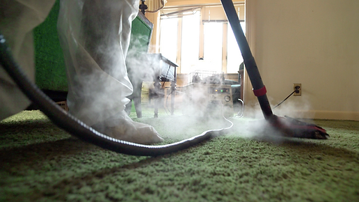 Bed Bug Steam Cleaning