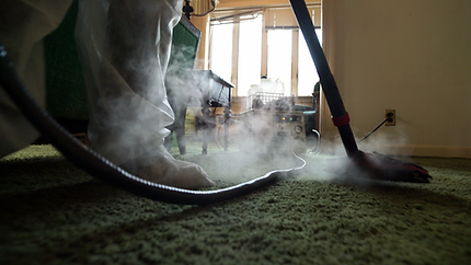 Industrial Bed Bug Steamer