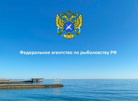 15 мая 2020 года состоялось совещание ФАР по действию ПП 719
