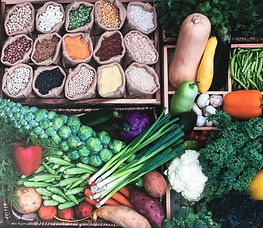 Plant-based whole-foods diet therapy, lifestyle change counseling