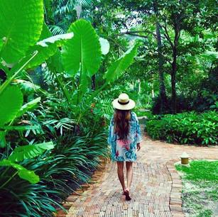 Откройте для себя мир уникальных растений в садах курорта RAYAVADEE (Краби, Таиланд)