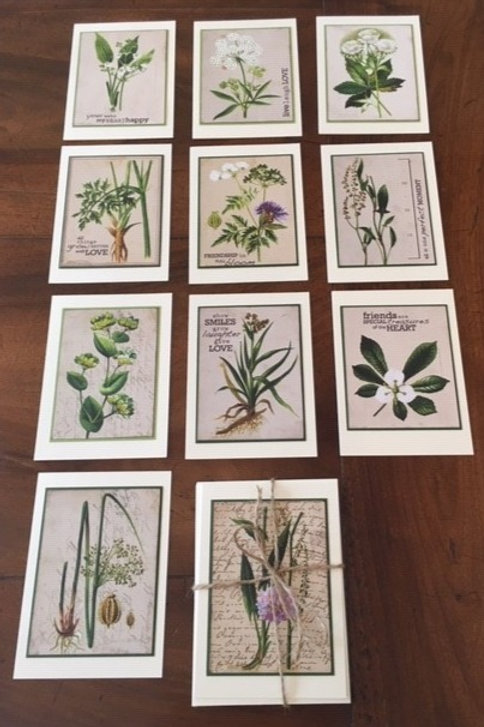 Vintage Seed Cards - packet of 6