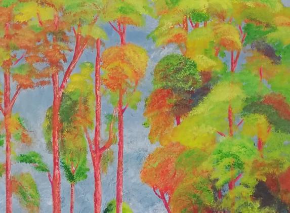 Sunny Trees 60x80cm