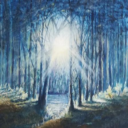 Sunshine Forest.