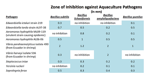 Zone of Inhibition 1.png