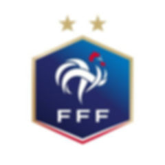 Logo FFF.jpg