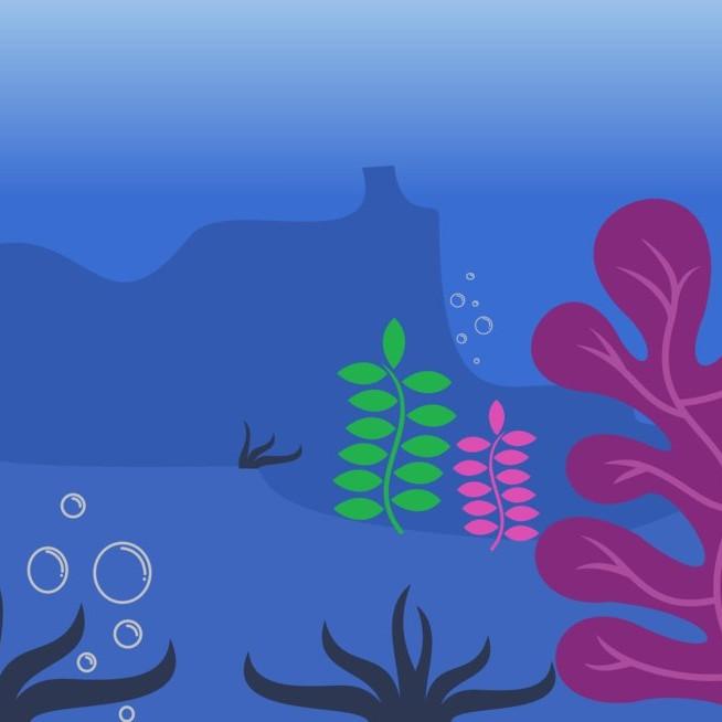 Wonderkids: Under the Sea