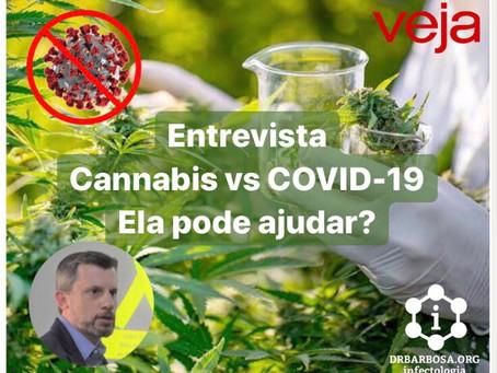Cannabis vs COVID-19: Ela pode ajudar?