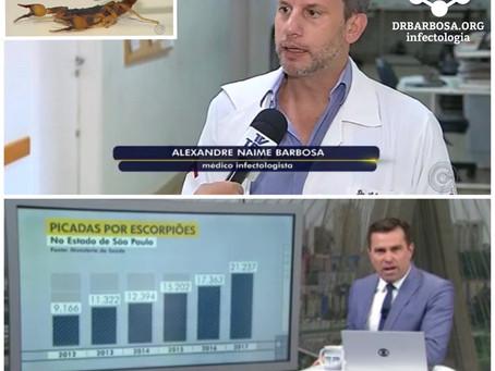 Infestação de escorpiões no interior de São Paulo