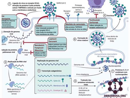 Tratamento da COVID-19: Potenciais Estratégias Terapêuticas contra o SARS-CoV-2 - Revista do CREMESP