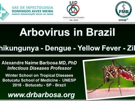 Arbovirus in Brazil - Chikungunya - Dengue - Yellow Fever - Zika