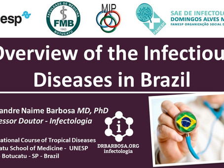 Overview of the Infectious Diseases in Brazil
