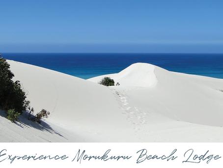 Experience Morukuru Beach Lodge