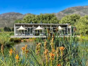 Dive Into the Delights of Paserene in the Lovely Franschhoek Valley
