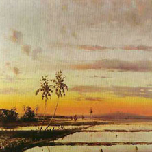 View of Sawah at Dusk