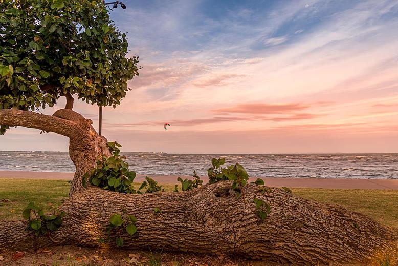 Lone Sunset Kitesurfer by Alpenglow Photography