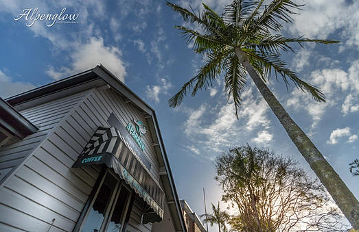 Coffee shops and Palm Trees in NSW coastal town.